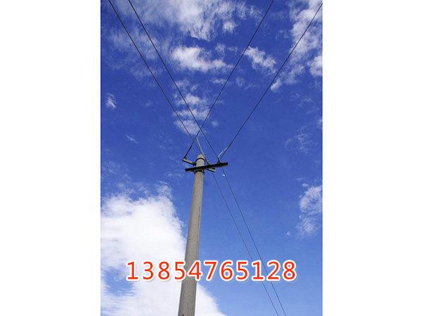 0033033935800157_b.jpg